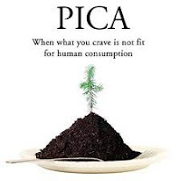 Pica and Autism: One Family's Solution!
